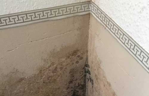 Mauerwerkstrockenlegung: Das müssen Sie wissen